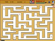 Cheetah Maze