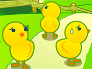 Chick Walk