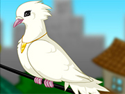 Dove Maker