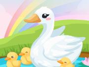 Duck Care