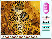 Play Fabulous tigers hidden numbers