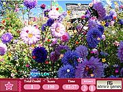 Flower Garden- Hidden Object
