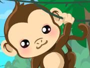 Monkey Care