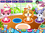 Play Pet Shop Caring