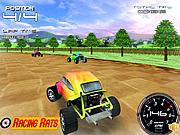 Play Rally Bugs Game