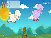 Running Sheep