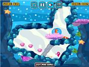 Seahorse Bubble