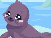 Seal Care