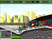 Turtles Racing