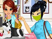 Veterinary Clinic Volunteer : Emily\'s Diary