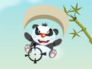 Crazy Pandas
