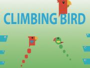EG Climb Bird