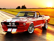 Fancy Mustang Differences