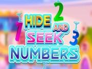 Hide and Seek Numbers