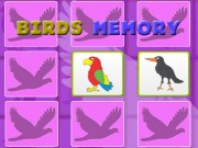 Kids Memory with Birds