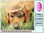 Melancholic dogs hidden numbers