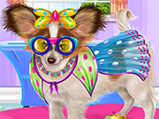Papillon Puppy Care