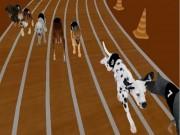 Real Dog Racing Simulator Game 2020